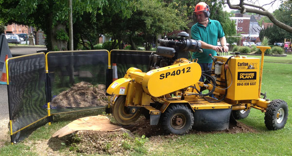 Image result for Stump Grinding Hampshire